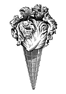 814090A © Free On French Head of Lettuce on an Ice Cream Cone