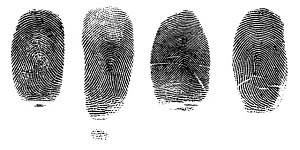 825981 © Free On French Fingerprints